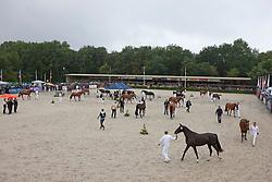 Overzicht keuringsringen<br /> KWPN Paardendagen 2011 - Ermelo 2011<br /> © Dirk Caremans