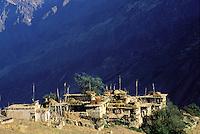Nepal - Region du Rukum - Village de Dunaï