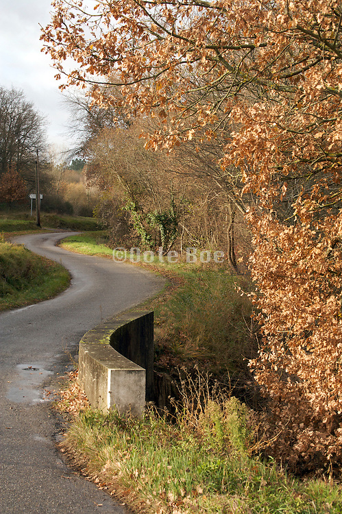 twisting countryside road during late autumn season