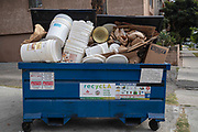 Recycling Dumpster, Los Angeles, California, USA