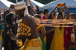 © Licensed to London News Pictures. 24/01/2016 Ipoh, Malaysia. A devotee with metals hooks pieced on his back dances as he arrives at Kallumalai Murugan Temple in Ipoh, Malaysia, during the Thaipusam Festival, Sunday, Jan. 24, 2016. Photo credit : Sang Tan/LNP