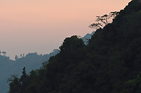 A view across the He Xin Chang Forest reserve, Dehong Prefecture, Yunnan Province, China