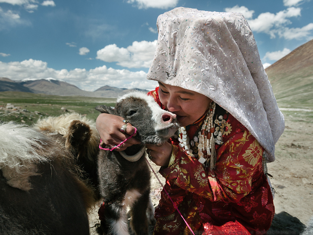 Woolook Bu is happy to have a new yak for the family herd. This young calf is just 1 day old. <br /> <br /> Daily life at the Khan (chief) summer camp of Kara Jylga.<br /> <br /> Trekking through the high altitude plateau of the Little Pamir mountains (average 4200 meters) , where the Afghan Kyrgyz community live all year, on the borders of China, Tajikistan and Pakistan.