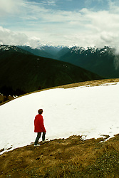 Washington: Olympic National Park. Hurricane Ridge..Photo copyright Lee Foster, www.fostertravel.com..Photo #: waolym105, 510/549-2202, lee@fostertravel.com