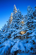 Winter on Macdonald Pass on the Continental Divide, Montana