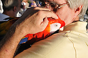 Man with macaw at the the 2013 Tucson Folk Festival.