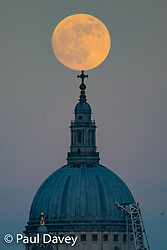 The 'Blood Moon' rises behind The City and St Paul's Cathedral in London ahead of its eclipse in the early morning, viewed from Hungerford Bridge on the River Thames. London, January 20 2019.