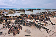 Rusty Bucket on Midway Island is a name of a beach that military men dumped anything they wanted to get rid of that they thought would rust away in time.