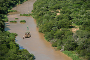 Black Rhinoceros (Diceros bicornis) slung from Super Huey Bell helicopter<br /> Great Fish River Nature Reserve, Eastern Cape Province<br /> SOUTH AFRICA<br /> A viable breeding population of 15 animals being relocated to an undisclosed destination.<br /> ENDANGERED SPECIES. CITES 1