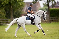 Allen Bertram, IRL, Molly Malone V<br /> Brussels Stephex Masters<br /> © Hippo Foto - Sharon Vandeput<br /> 31/08/19