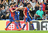 Football - 2016 / 2017 Premier League - Crystal Palace vs Stoke City<br /> <br /> Scott Dann of Crystal Palace celebrates scoring goal no 2 at Selhurst Park<br /> <br /> <br /> Credit : Colorsport / Andrew Cowie