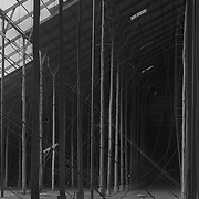 Break in the Canopy<br /> <br /> Open roof<br /> Murtoa Stick Shed