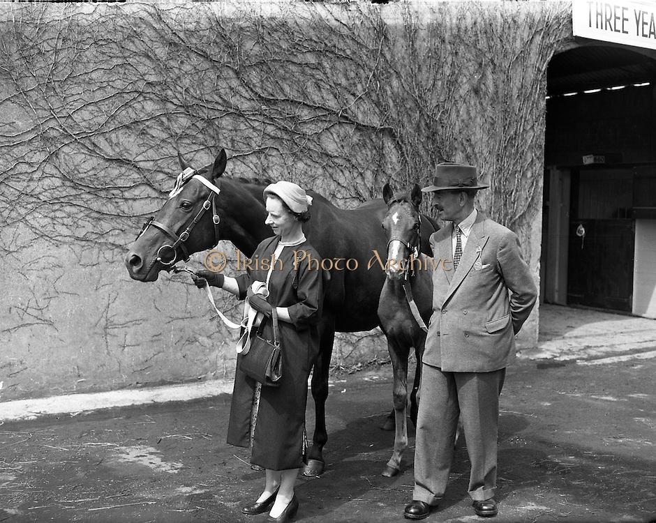 RDS Horse Show. Baron and Baroness de Robeck.06/08/1957