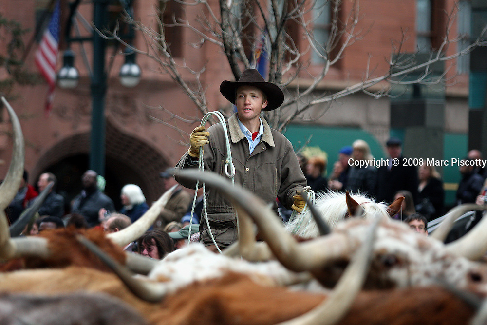 """SHOT 1/15/08 1:39:42 PM - Cowboy Justin Johnson, 19, of Ellicot, Co. helps drive Texas Longhorn Cattle through the streets of Downtown Denver Tuesday January 15, 2007 during the National Western Stock Show Parade. The National Western Stock Show is held every January at the National Western Complex in Denver, Colorado. First held in 1906, it is the world's largest stock show by number of animals and offers the world?s only carload and pen cattle show in the historic Denver Union Stockyards. The stock show is governed by the Western Stock Show Association, a Colorado 501 (c) 3 institution, which produces the annual National Western Stock Show in an effort to forward the association's mission: """"To preserve the western lifestyle by providing a showcase for the agricultural industry through emphasis on education, genetic development, innovative technology and offering the world's largest agricultural marketing opportunities."""" The Super Bowl of livestock shows, National Western hosts 20 breeds of cattle, horses, sheep, swine, goats, llamas, bison, yak, stock dogs, poultry and rabbits. The 2008 National Western runs from January 12-27 this year..(Photo by Marc Piscotty / © 2008)"""