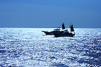 Japanese Fishing Boats, Sagami Bay - The fishing industry has always played an important role in both the economy and the eating habits of the Japanese.