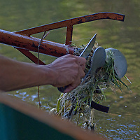 A Yanayacu Indian boat driver cleans away aquatic vegetation from his propeller in the Yanayacu River, a tributary of the Amazon.