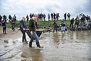 Nederland, Kekerdom, 10-5-2012In de Waal wordt de steur uitgezet. Drie van de veertien steuren werden door de voormalig Commissaris van de Koningin in Gelderland Jan Terlouw, en vertegenwoordigers van Rijkswaterstaat, Waterschap Rivierenland, het Ministerie van EL&I, ARK Natuurontwikkeling en het Wereld Natuur Fonds naar de waterlijn gedragen en losgelaten. De laatste door Jan Terlouw en Wouter Helmer van stichting ARK.Foto: Flip Franssen/Hollandse Hoogte