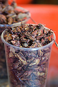 Chapulines, fried grasshoppers with lime and chile, for sale at a market stall in Oaxaca, Mexico.
