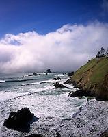 Fog and surf Ecola Statae Park Oregon USA