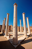Columns of the House of Dionysos in the ruins of the Greek city of Delos, the birthplace of the twin gods Apollo and Artemis. .<br /> <br /> Visit our GREEK HISTORIC PLACES PHOTO COLLECTIONS for more photos to download or buy as wall art prints https://funkystock.photoshelter.com/gallery-collection/Pictures-Images-of-Greece-Photos-of-Greek-Historic-Landmark-Sites/C0000w6e8OkknEb8<br /> .<br /> Visit our ANCIENT GREEKS PHOTO COLLECTIONS for more photos to download or buy as wall art prints https://funkystock.photoshelter.com/gallery-collection/Ancient-Greeks-Art-Artefacts-Antiquities-Historic-Sites/C00004CnMmq_Xllw