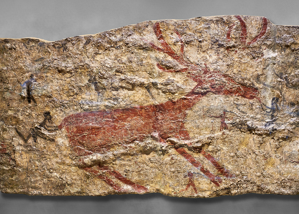 Fresco of human figures around a deer. None of the figures carry weapons and some a dressed in leopard costumes. The figures seem to be trying to hold on or touch the deer amd one figure appears to be holding its tongue. 6000 BC, Catalhoyuk Collections. Museum of Anatolian Civilisations, Ankara. .<br /> <br /> If you prefer you can also buy from our ALAMY PHOTO LIBRARY  Collection visit : https://www.alamy.com/portfolio/paul-williams-funkystock/prehistoric-neolithic-art.html - Type Catalhoyuk into the LOWER SEARCH WITHIN GALLERY box. Refine search by adding background colour, place, museum etc.<br /> <br /> Visit our PREHISTORIC PLACES PHOTO COLLECTIONS for more  photos to download or buy as prints https://funkystock.photoshelter.com/gallery-collection/Prehistoric-Neolithic-Sites-Art-Artefacts-Pictures-Photos/C0000tfxw63zrUT4