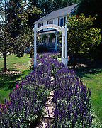 """Garden pathway leading to """"A Day in the Country Bed and Breakfast,"""" Berlin, Ohio."""