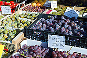 Plums, grapes and greengages fresh fruit on sale at food market at La Reole in Bordeaux region of France