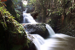 Onomea Falls, Hilo, Big Island, Hawaii