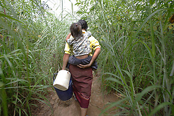 Bounlid still has to walk for to collect drinking water, even during the wet season.  The well they dug close to their home has almost no water, as they are on a small hill, and the ground too rocky to dig deeper.<br /> She pushes a hand cart about 500m to a small track from where she must walk through long sharp grass.<br /> Lang, now 3.5 years old loves to go with her mum, but this does limit the amount of water she can bring back.  Each bucket will weigh 8kg and Lang requires carrying during the wet season.<br /> Santhong Disrict Vientiane Municipality, Lao PDR.
