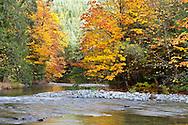 The Cameron River just outside Macmillan Provincial Park (Cathedral Grove) near Port Alberni, British Columbia, Canada