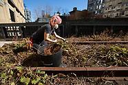High Line Spring Cutback 2021