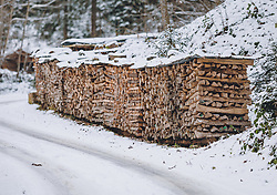 THEMENBILD - Brennholz aufgestappelt an einem Wegesrand im Wald, aufgenommen am 04. Dezember 2020, Piesendorf, Österreich // Firewood piled up at a roadside in the forest on 2020/12/04, Piesendorf, Austria. EXPA Pictures © 2020, PhotoCredit: EXPA/ Stefanie Oberhauser
