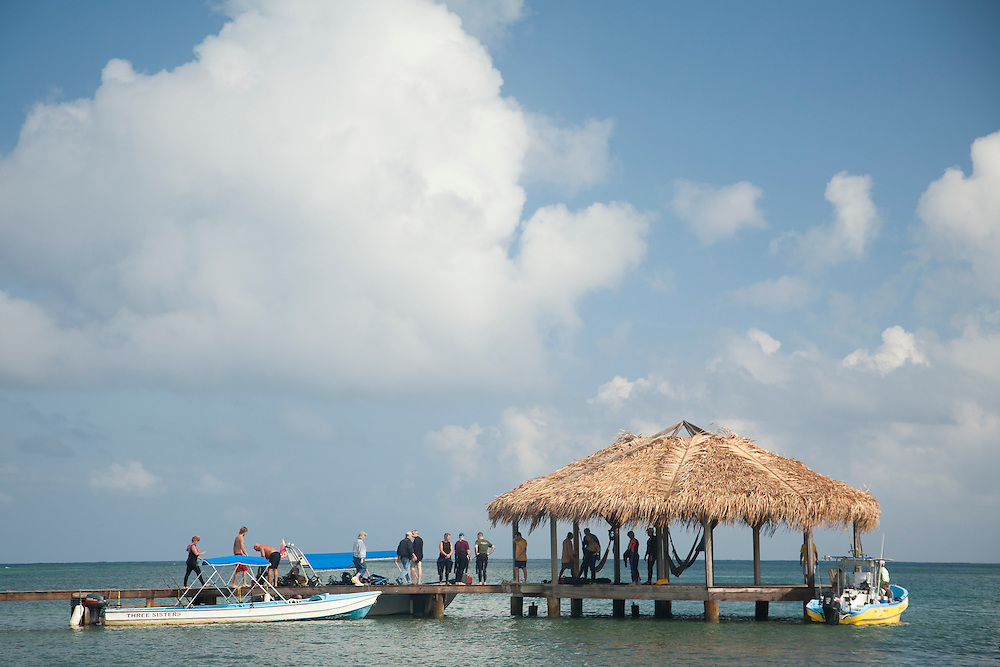 Central America, Honduras, Bay Islands, Roatan, dive boat, dock and thatched palapa, Palmetto Bay Plantation    PR
