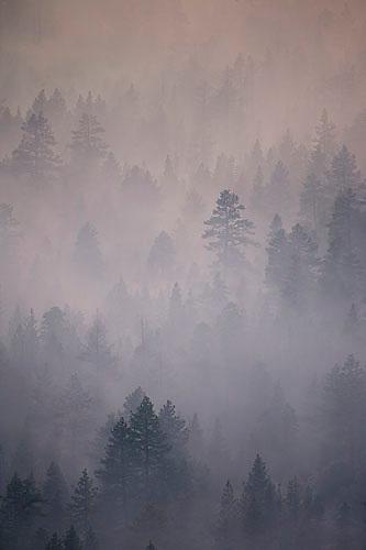 Angora Fire in South Lake Tahoe, CA