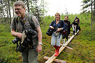Bear watching tourists on their way to the hides, Lassi Rautiainen in front, followed by Bridget Wijnberg, Kuhmo Finland