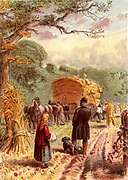 Harvest time. Loading sheaves of corn onto a horse-drawn cart. The cart would be taken back to the farmyard and the sheaves either stored in a barn or built into stacks to be stored until it was a convenient time to separate the corn from the straw by threshing.   Kronheim chromolithograph from 'Pictures from Nature' by Mary Howitt (London, 1869).