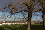 Dog walkers pass beneath 100 year-old ash trees bordering Ruskin Park and in the distance, Edwardian period homes and a London cityscape beyond, on 2nd February 2018, in south London, England.