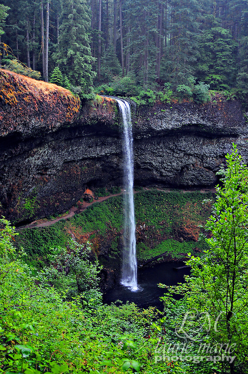 The iconic grand South Falls in the line of 10 majestic waterfalls on Silver Creek in Silver Falls State Park