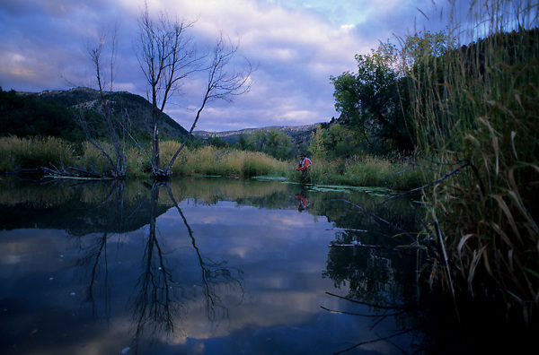 Stock photo of a fisherman flyfishing from the edge of a remote trout pond in Colorado.