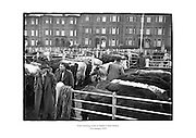 Early morning scene at Dublin Cattle Market.<br /> <br /> 21st January 1959<br /> 21/01/1959