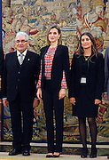 MADRID, SPAIN, 2015, DECEMBER 08 <br /> <br /> Queen Letizia at the Zarzuela Palace, attend hearings of the Representation of the FSG and the Board of the Platform for Children organizers of Spain<br /> ©Exclusivepix Media