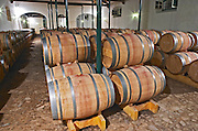 Oak barrel aging and fermentation cellar. Quinta do Carmo, Estremoz, Alentejo, Portugal