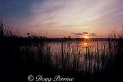 sunrise in Everglades National Park,<br /> Florida