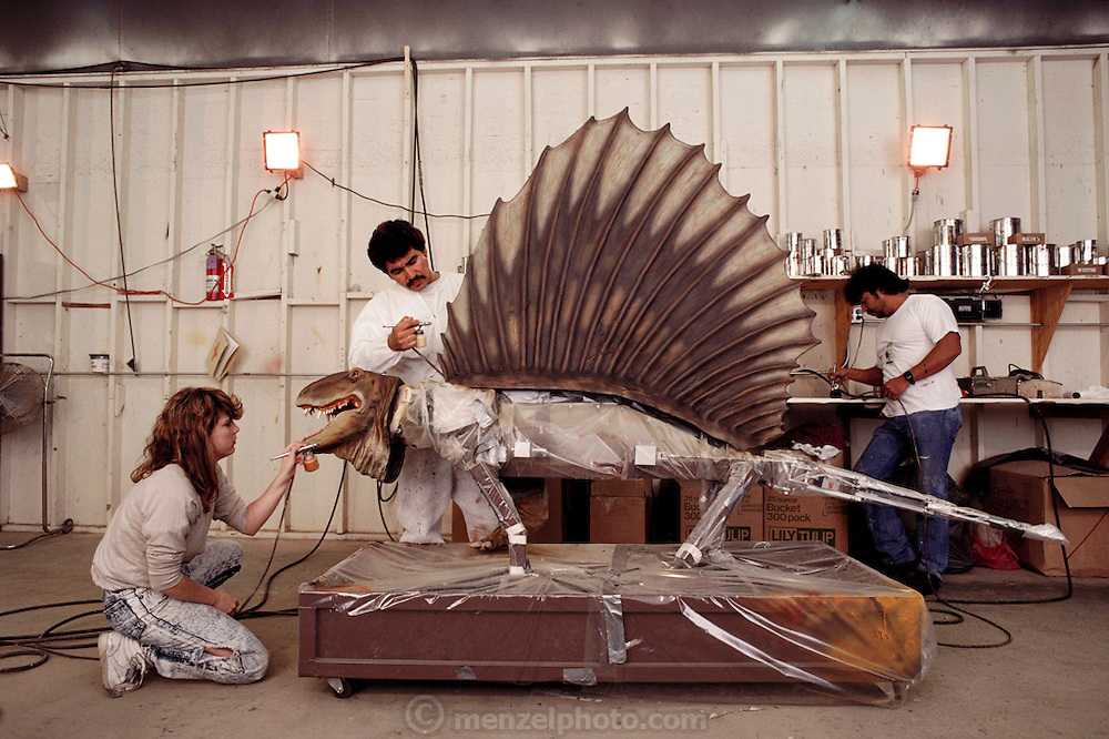 At Dinamation International's factory in southern California, artists paint the head and sail of Dimetrodon, a reptile that lived before the dinosaurs. The body of this model will be left bare to show the inner mechanical workings. Dinamation International, a California-based company, makes a collection of robotic dinosaurs. The dinosaurs are sent out in traveling displays to museums around the world. The dinosaur's robotic metal skeleton is covered by rigid fiberglass plates, over which is laid a flexible skin of urethane foam. The plates and skin are sculpted and painted to make the dinosaurs appear as realistic as possible. The creature's joints are operated by compressed air and the movements controlled by computer.