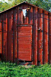 Ranch shed with a longhorn skull hanging above the door