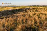 Wetlands at Valentine National Wildlife Refuge in Cherry County, Nebraska, USA