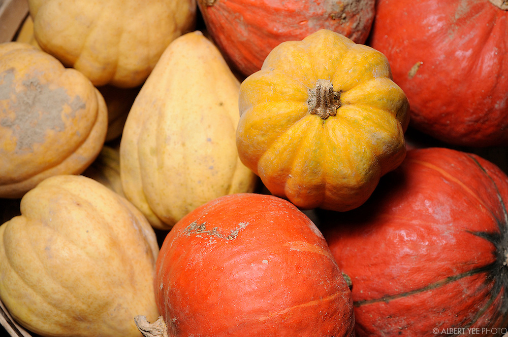 Headhouse Square Farmers Market<br /> <br /> The Food Trust<br /> <br /> October 28, 2012