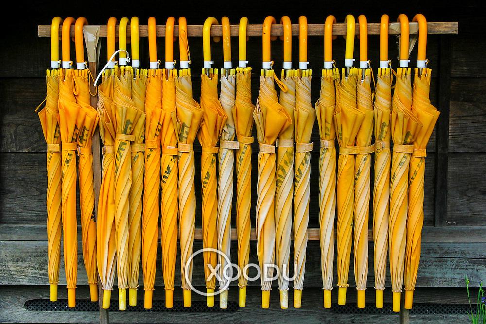 Yellow umbrellas, Takayama, Japan (May 2004)