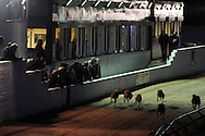 Greyhound racing at Ystrad Mynach Greyhound track, South Wales on Thursday 16th May 2013. pic by Andrew Orchard