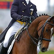 NLD/Boekelo/20101015 - Military Boekelo 2010 dressuur, Vincent Martens